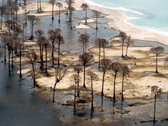 Tsunami del Golfo Moro