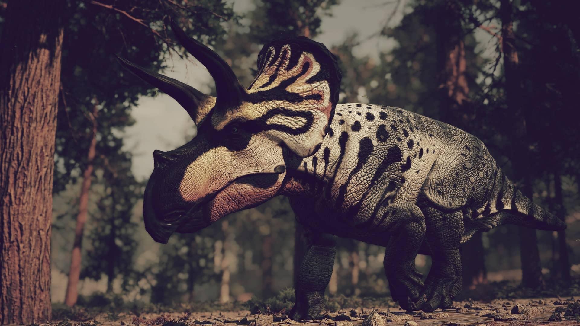 Dinosaurio Eotriceratops xerinsularis