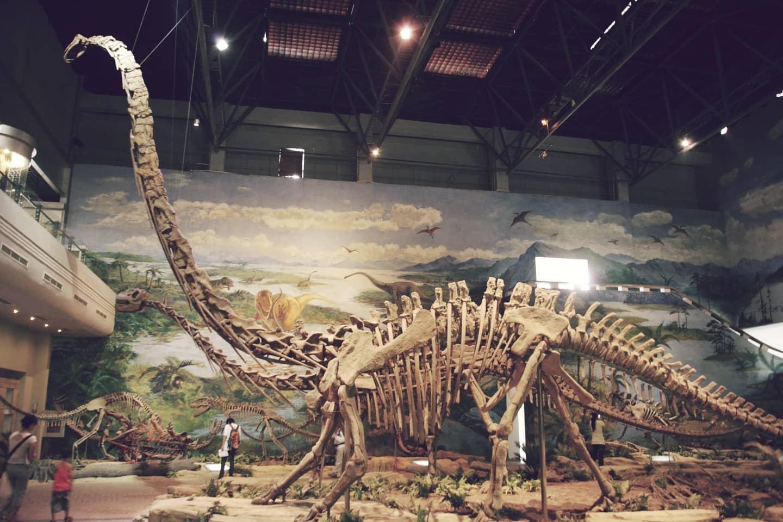 Dinosaurio Huaxiaosaurus aigahtens