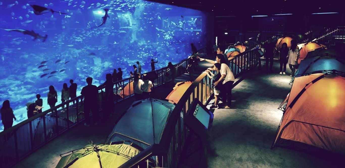 S.E.A. Aquarium, el segundo acuario más grande del mundo