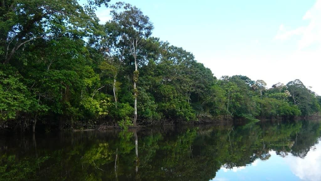 Amazonas, el departamento más grande de Colombia