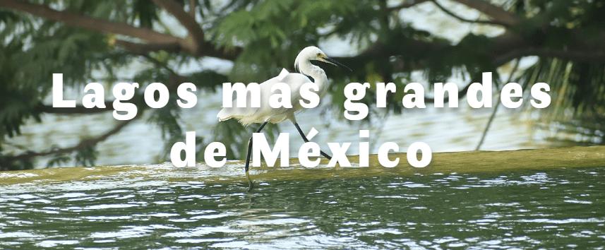 Los lagos más grandes de México